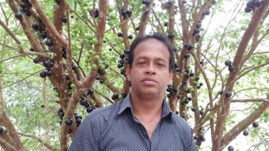 Photo of নজরুলের মিশ্রফল বাগানে ফলেছে দুর্লভ জাবুতিকাবা ফল