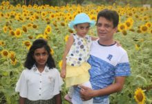 Photo of সূর্যমুখী ক্ষেতে ফুল প্রেমিদের সেলফির হিরিক